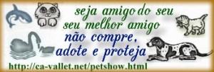 novo_banner_petshow